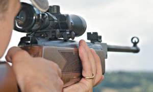 Нарезное оружие как один из лучших видов оружия для охотника
