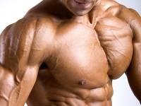 как правильно качать грудные мышцы на видео